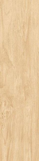 Porcelanato Retificado 24,5x100cm -Amendola Naturale Acetinado